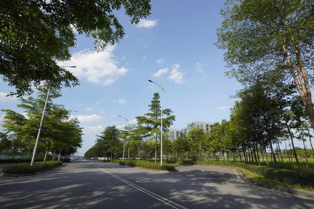 Phố đi bộ Ha Noi Garden City